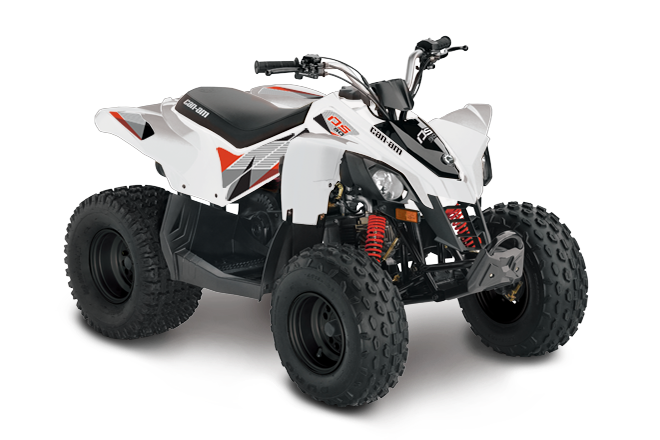 Can-Am DS 90 2018
