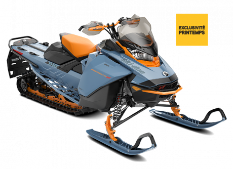 Ski-Doo Backcountry X 2022